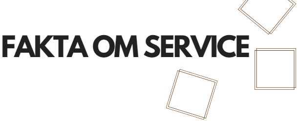 Fakta om service, lönsam service,